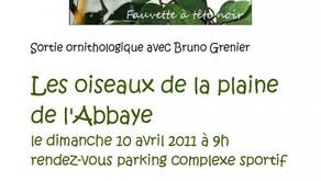 """Affiche sortie avec Bruno Grenier """"Les oiseaux de la plaine de l'Abbaye"""" 10 avril 2011"""