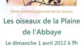 """""""Les oiseaux dans la Plaine de l'Abbaye""""  1 avril 2012"""