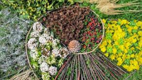 Atelier art-nature, dimanche 29 avril 2018