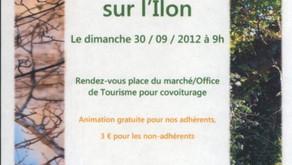 """""""La Ripisylve sur l'Îlon""""  30 Septembre 2012"""