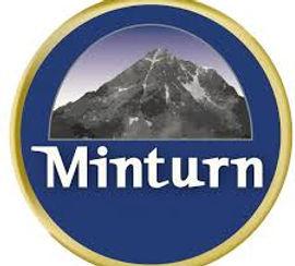 Town Logo.jpg