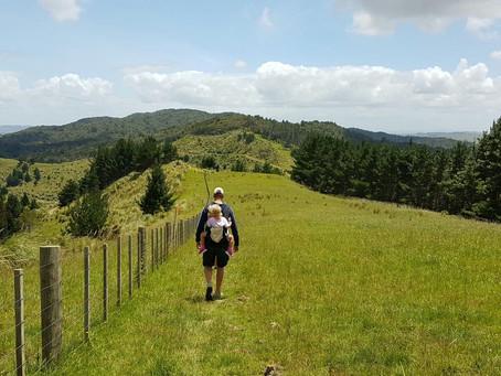 Wereldreis – Nieuw-Zeeland met kinderen