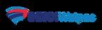 BESIX-Watpac Logo.png