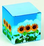 BOX GIRASOLE