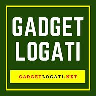 GADGET LOGATI  250x100 px striker .png