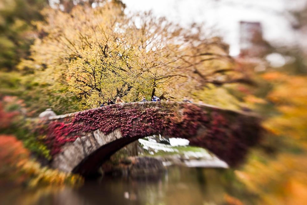 sebastian-matthias-werbefotografie-businessfotografie-street-wiesbaden-frankfurt-central_park_bridge_new-york-city-autumn