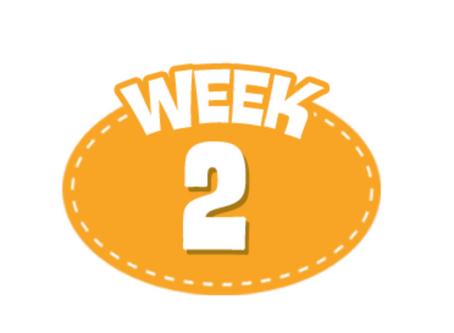 Week 2 6/29/2020 - 7/3/2020