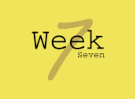 Week 7 8/3-8/9