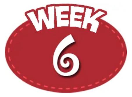Week 6 7/27-8/1/2020
