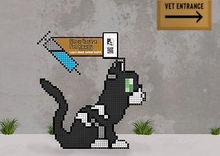 Cat Ambiant.jpg