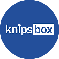 Knipsbox Icon Blau Zürich