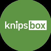 Knipsbox Icon Grün Aargau