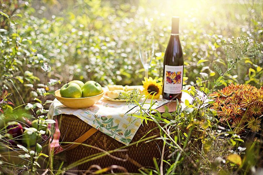 picnic-3661796_1920.jpg