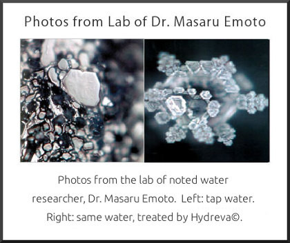 Dr. Masaru Emoto's water photos of structured water