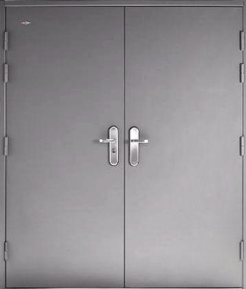 Steel Hinged Double Door