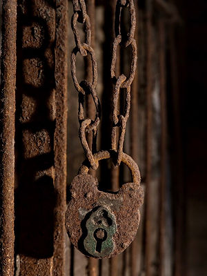 Front Page SOTT Lock & Chain 900px.jpg