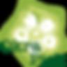 okra_logo_2017.png