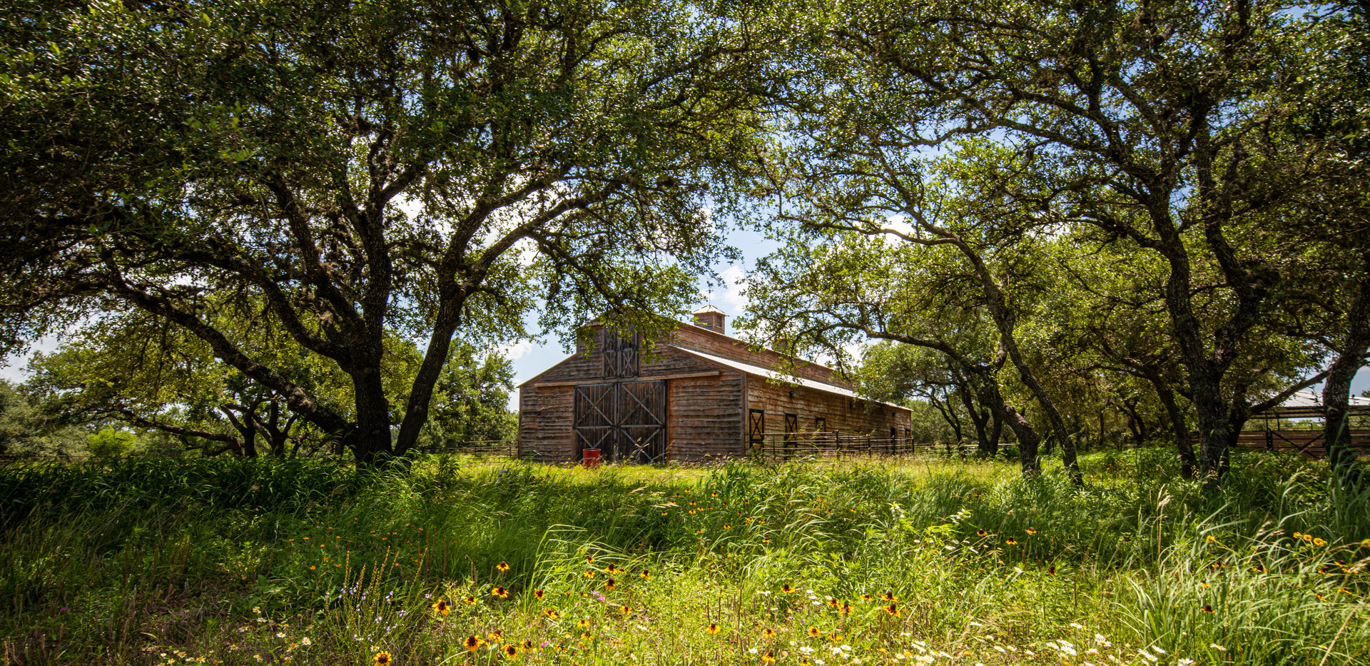 1U4A1915Mauldon_Charco Ranch_Fossum Stud