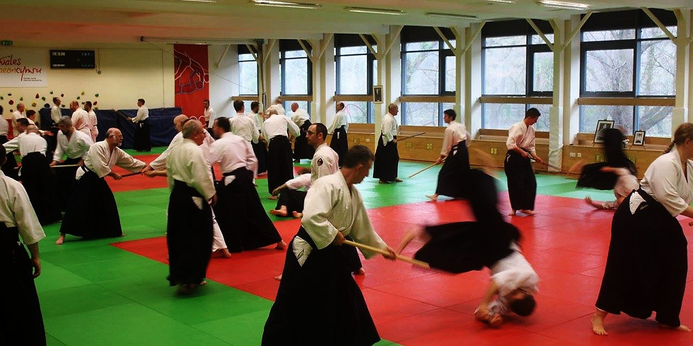 Aikido Cardiff: Winter Open Course and Kyu Grading 2017