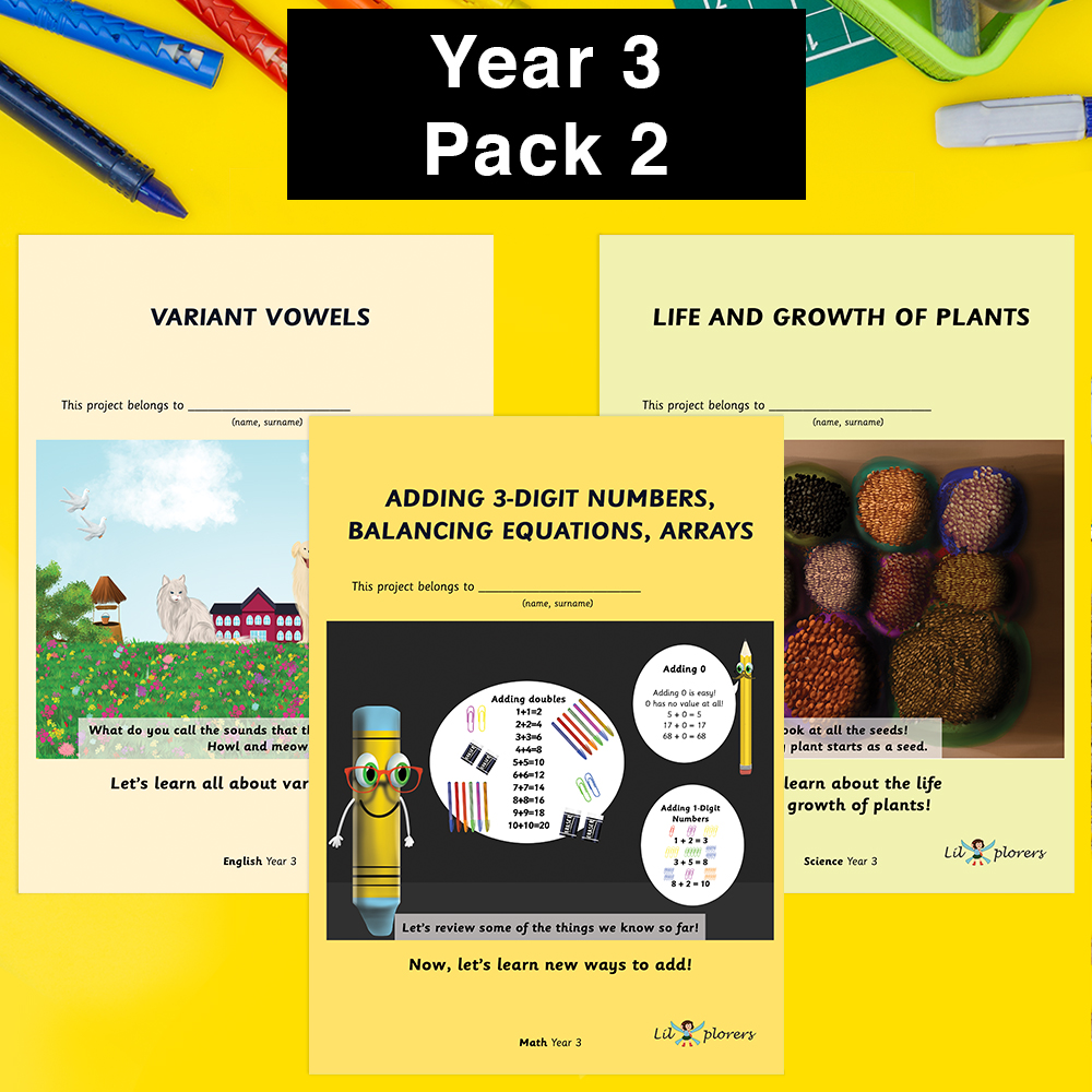 Year 3 Pack 2
