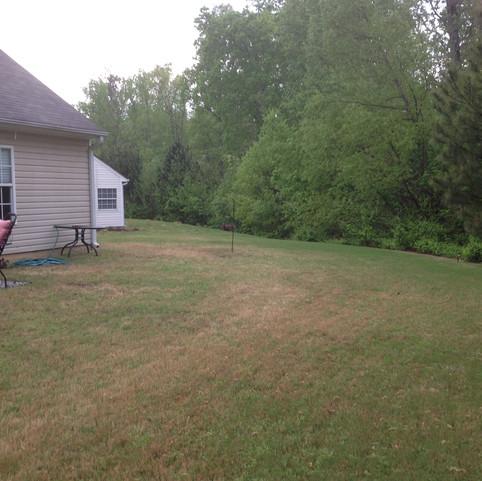 Irrigation & Wetscape renovation: Before