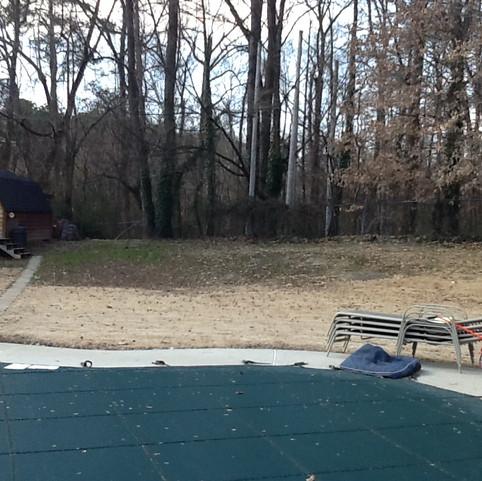 Stone Patio & full backyard design: Before