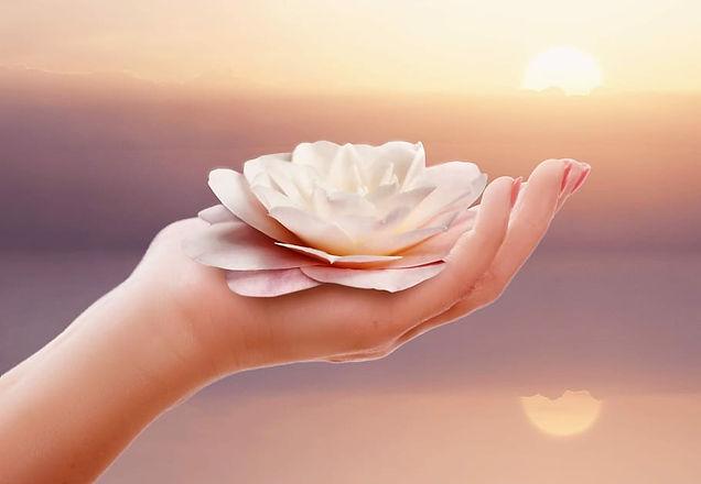 hand-nature-ease-wellness.jpg