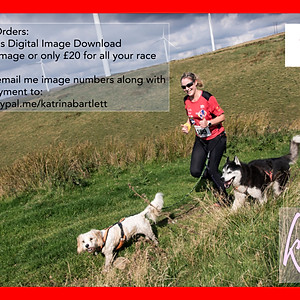 Red Kite Trail Events | Autumn Cani-Cross Race