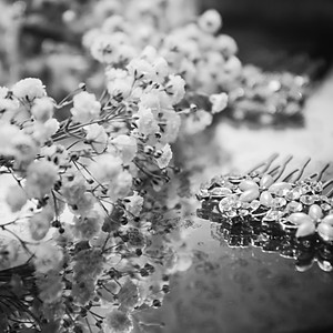 Natalie & Robin Godding | Wedding Photos | Matara Centre