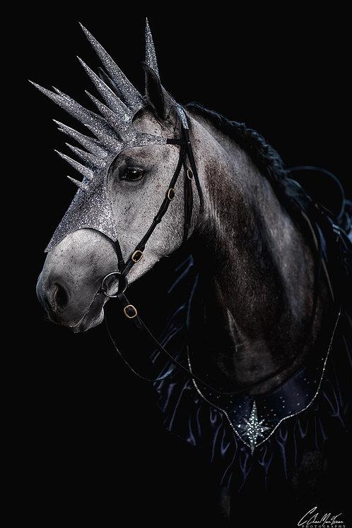 Masque équestre pailleté argenté - Spectacle - Cheval étoile