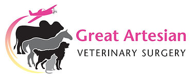 Great Artesian Vet Surgery_CMYK.jpg
