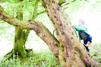 Boy climbing tree in wellies