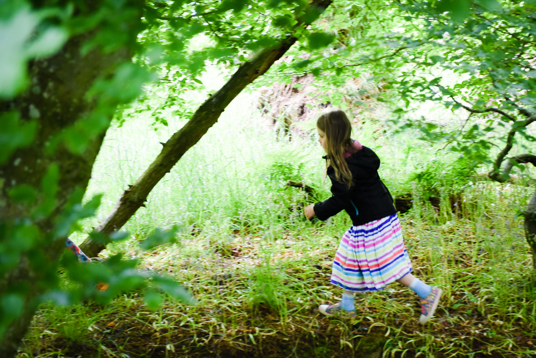 Woodland Running