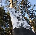 kaguragachyou19-3-5 019s.JPG
