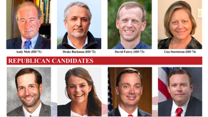 Florida House Candidates: Lerner in Critical Times