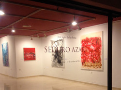 """Exposición """"Seguro Azar"""" 2014"""