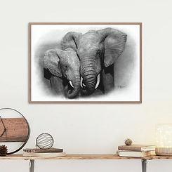 Framed African Elephants pencil drawing