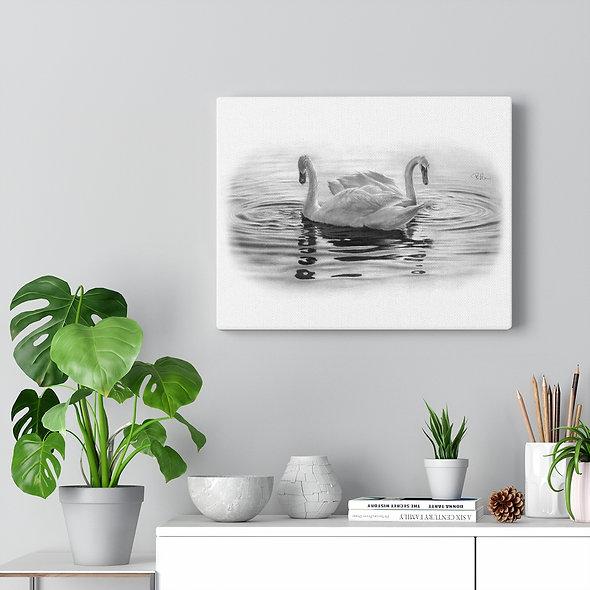 'A Quiet Day' Swan Gallery Wrap Canvas