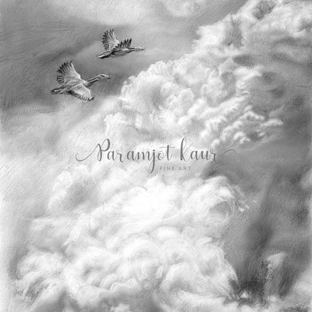 Landscape drawing of two birds flying above fluffy clouds