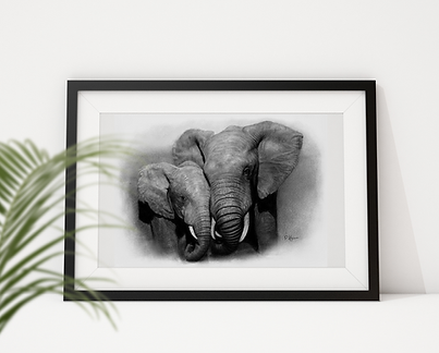 Framed realistic pencil drawing of Afric