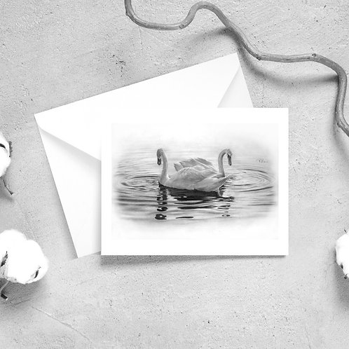 'A Quiet Day' Swan Satin Greeting Cards