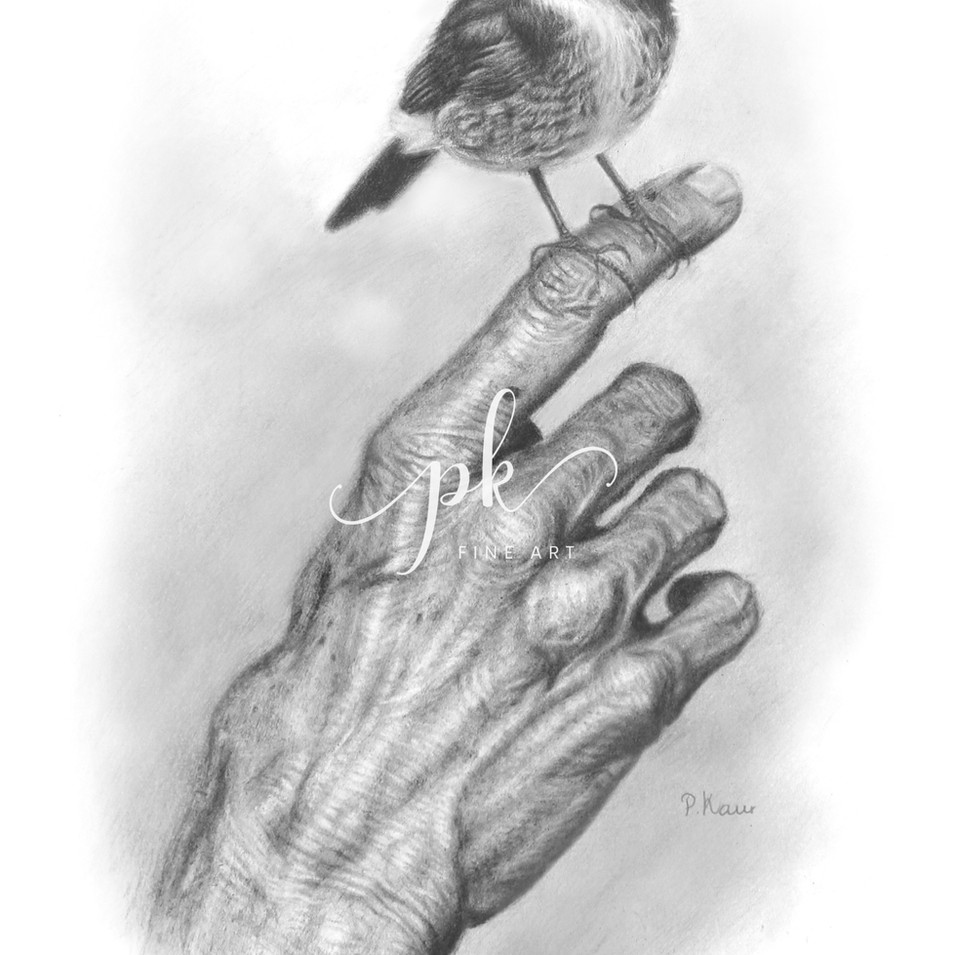 Drawing of a small bird perched on the f