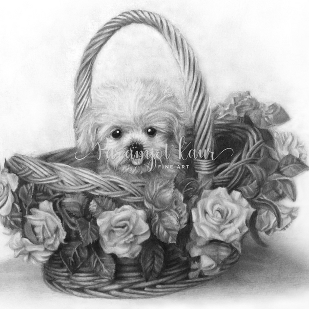 A drawing of a puppy sitting in a basket covered with roses