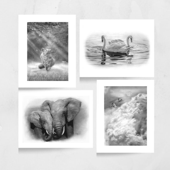 Wildlife Greeting Cards Mixed Pack