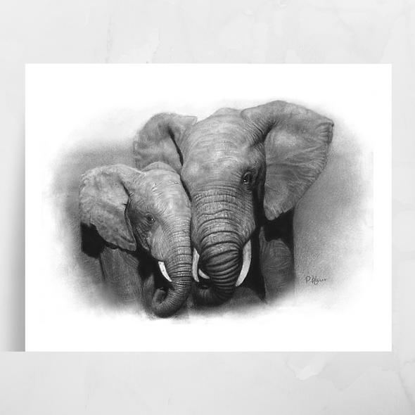 'African Elephants' Luster Print