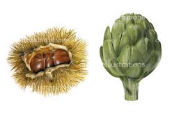 castagne e carciofo