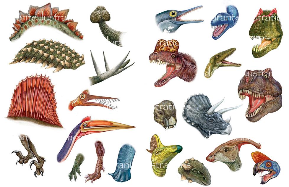 armi dei dinosauri