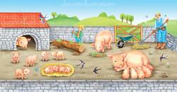 maiali della fattoria