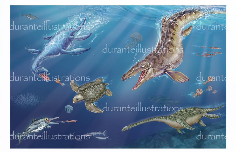 rettili del mare