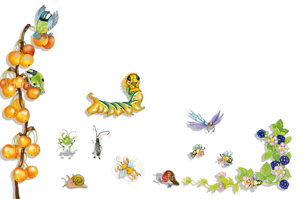 insetti buffi